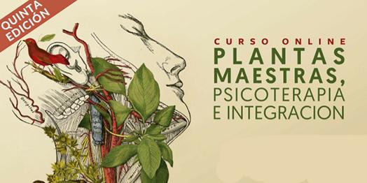 Curso Online: Plantas Maestras, Psicoterapia e Integración