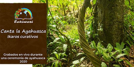 Canta la Ayahuasca - Ikaros de guérison enregistrés en direct