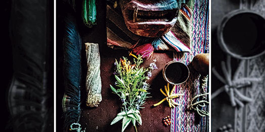 Libro sobre medicina tradicional boliviana