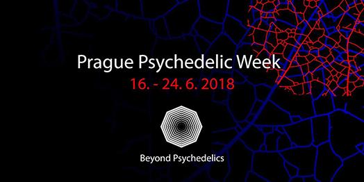 Takiwasi au congrès Beyond Psychedelics